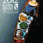 South Asia in IFPRI's Global Food Policy Report