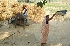 Bihar: Food Security and the Way Forward