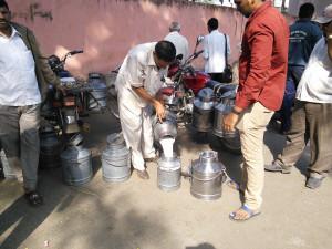 Milk Distributor in Pune, Maharashtra. Source: (Flickr) Vinay Kumar, IFPRI