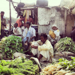 Highlights of Recent IFPRI Food Policy Research in India