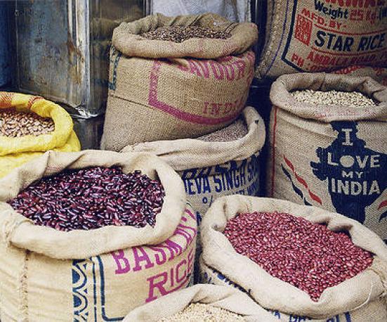 local food vs globalization essay