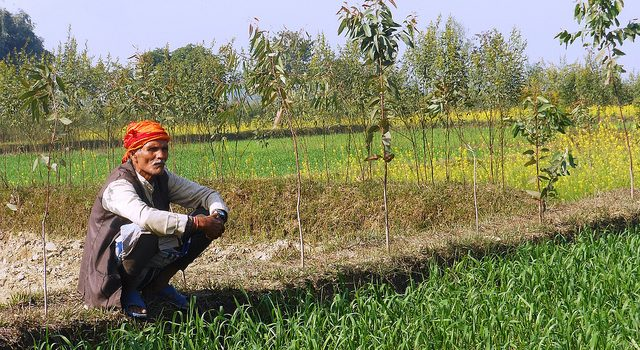 Agricultural Mechanization in Nepal